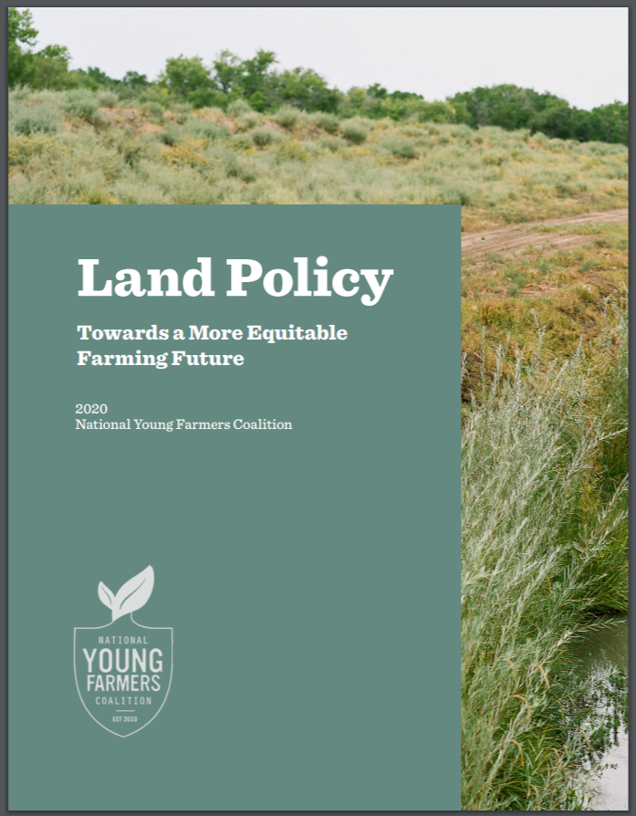 Cover of Young Farmers Report