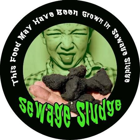 Disgusting picture of sewage sludge.