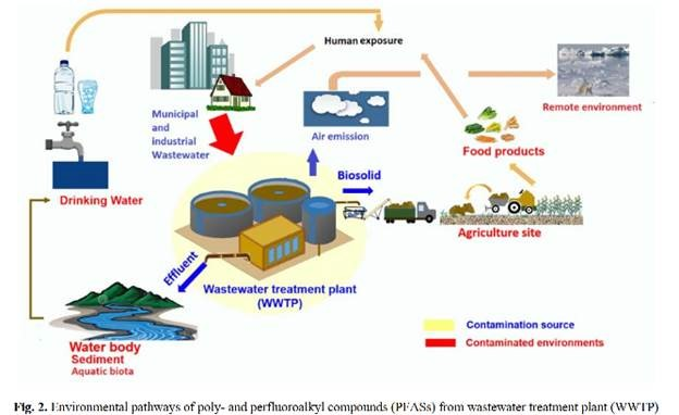 Chart showing how biosolids contaminate the environment.